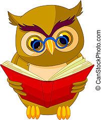 мультфильм, мудрый, сова