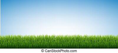 небо, isolated, зеленый, задний план, синий, трава
