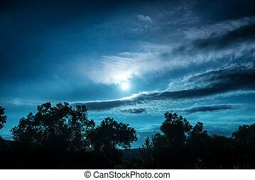ночь, полный, лес, луна