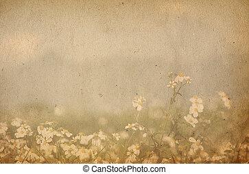 образ, или, текст, бумага, textures, пространство, старый, идеально, задний план, -, цветок