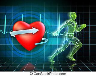 обучение, cardio
