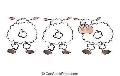 овца, белый, group.
