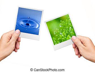 окружающая среда, растение, природа, концепция, воды, photos, держа, руки