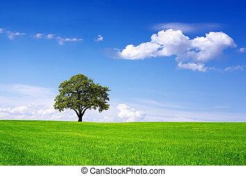 окружающая среда, чистый