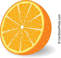 оранжевый, вектор, фрукты