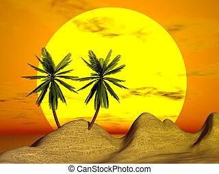 оранжевый, закат солнца, пальма, &