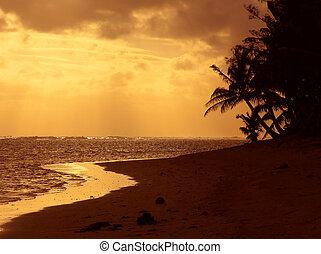 оранжевый, закат солнца