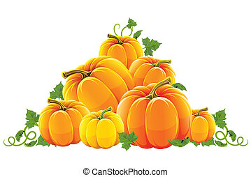 оранжевый, уборка урожая, холм, созревший, тыква