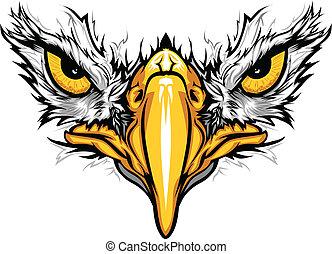 орел, eyes, вектор, иллюстрация, клюв