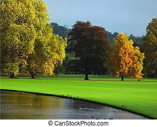 осень, англия