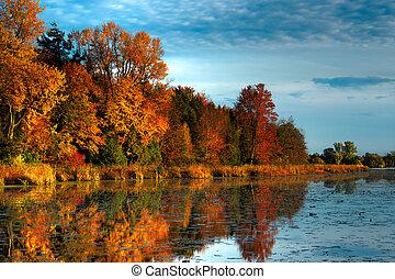 осень, берег, hdr, лес