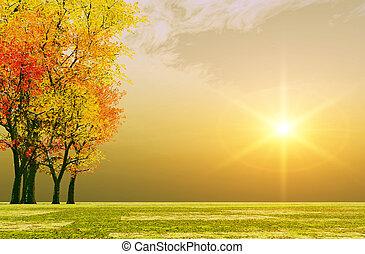 осень, закат солнца