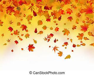 осень, leaves, fallen, задний план