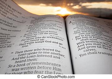 основной момент, закат солнца, малахия, задний план, святой, открытый, глава, библия, 4, солнце, clouds, 2., стих
