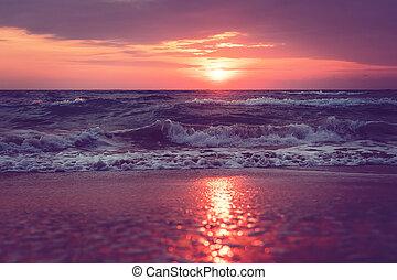 остров, sanibel, восход, красивая, флорида