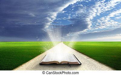 открытый, библия, field.