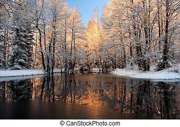 отражение, золотой, солнечный лучик