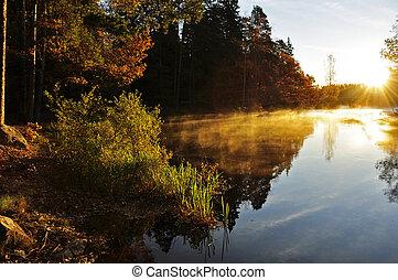 отражение, озеро, спокойный