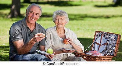 пара, пикники, сад, в отставке