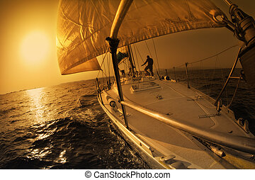 паруса, лодка