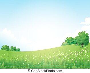 пейзаж, вектор, зеленый, trees