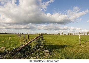 пейзаж, голландский