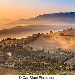 пейзаж, италия, над, утро, туман, тоскана