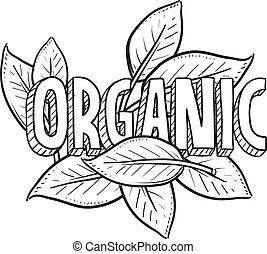 питание, эскиз, органический