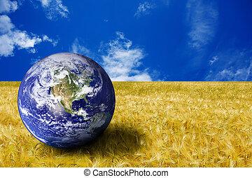 планета, поле, желтый, земля