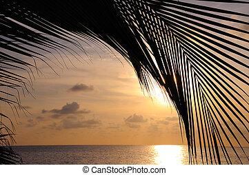 пляж, задний план, закат солнца