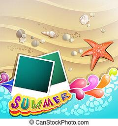 пляж, морская звезда, лето