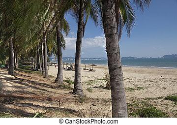 пляж, пейзаж, море