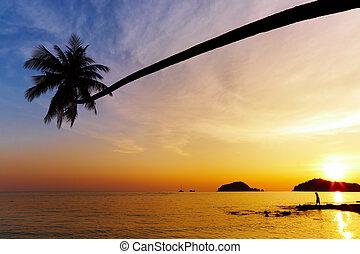 пляж, таиланд, тропический