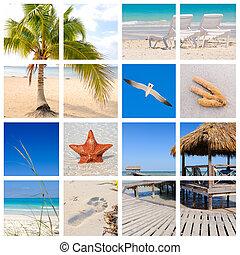 пляж, тропический, коллаж