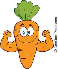 показ, морковь, arms, мышца