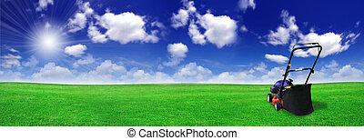 поле, газон, зеленый, косилка