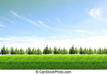поле, задний план, небо, синий, зеленый