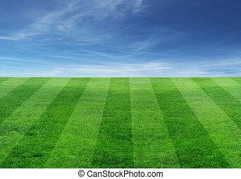 поле, футбольный