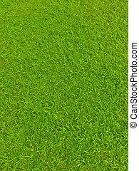 поле, футбол, зеленый, трава