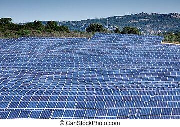поле, panels, солнечный
