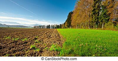 поле, ploughed