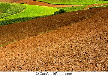 поля, ploughed