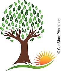 природа, вибрирующий, дерево, вектор, солнце, логотип