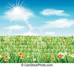 природа, задний план, трава, зеленый