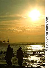 прогулка, семья, закат солнца
