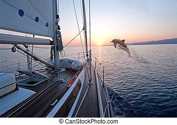 прыжки, лодка, doplhin, парусный спорт