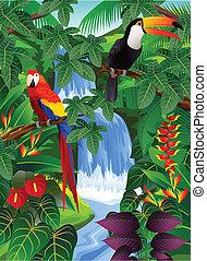 птица, тропический