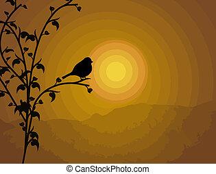 птица, филиал