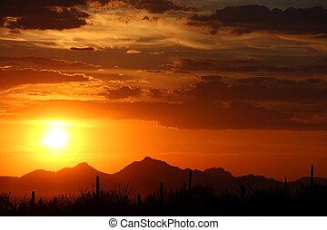 пустыня, закат солнца