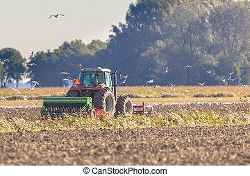работа, трактор, plough